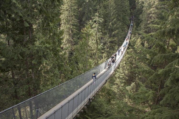 capilano-suspension-bridge-1393076